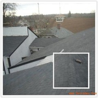 Laminated asphalt shingles on hot sale