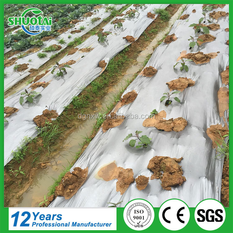 Agricultural biodegradable strawberry plantation silver and black mulch film perforated ldpe hdpe plastic film hole punch