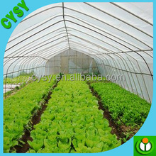 Agricultural Etfe Greenhouse plastic film covering for sale Philippines