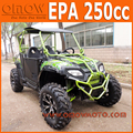 EPA Automatic 250cc Side x Side UTV