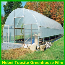 LDPE anti-drip agricultural plastic blue/transparent greenhouse film