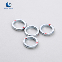 Small Neodymium Subwoofer Magnet For Sale