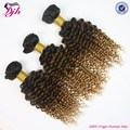 Grade 8A brazilian virgin remy deep curly human hair extension