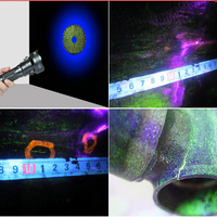 European quality ultra bright 365nm Nichia led UV light for professional ndt