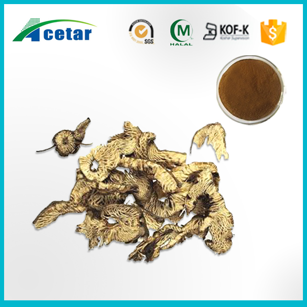 Pure natural herbal black cohosh powder extract