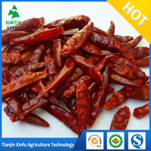 100% Sun dry red hot chilli