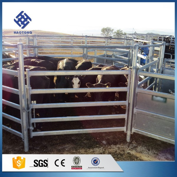 30 Years' factory supply cattle fencing panels metal fence 6 bars heavy duty corral cattle panel