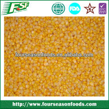 2016 Iqf bulk frozen sweet corn , golden supplier