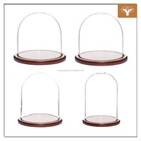 Glass Display Dome Cloche Glass Dome With Wooden Base