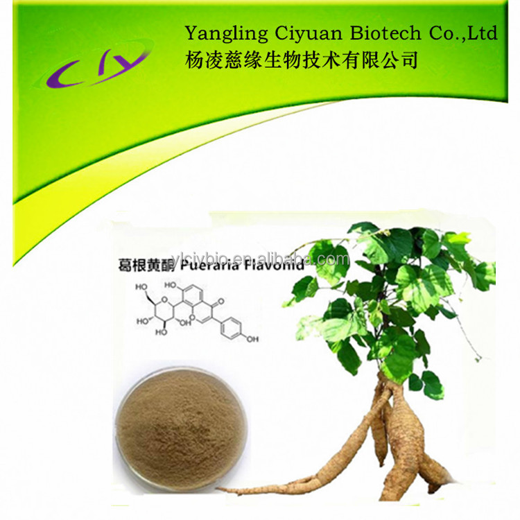 High quality pure herbal Pueraria Lobata/ kudzu root extract 40% pueraria powder extract capsules for breast growth