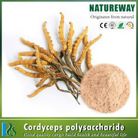 100% natural High Quality Yarsagumba Extract (Cordycep Sinensis)