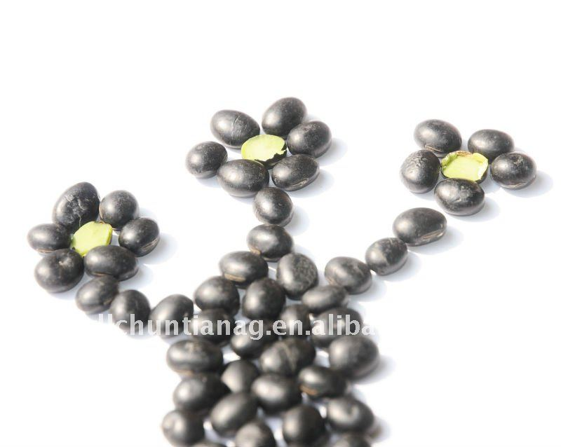 organic black soybeans with green kernel