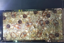 Wood Fossil Gemstone Tiles Slabs Brown Semi Precious Stone Wall Panel Blue Semi Precious Wall