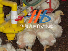 poultry house cleaning equipment poultry equipment price