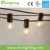 G40 Globe LED String Lights with 12 Clear Bulbs String Lights