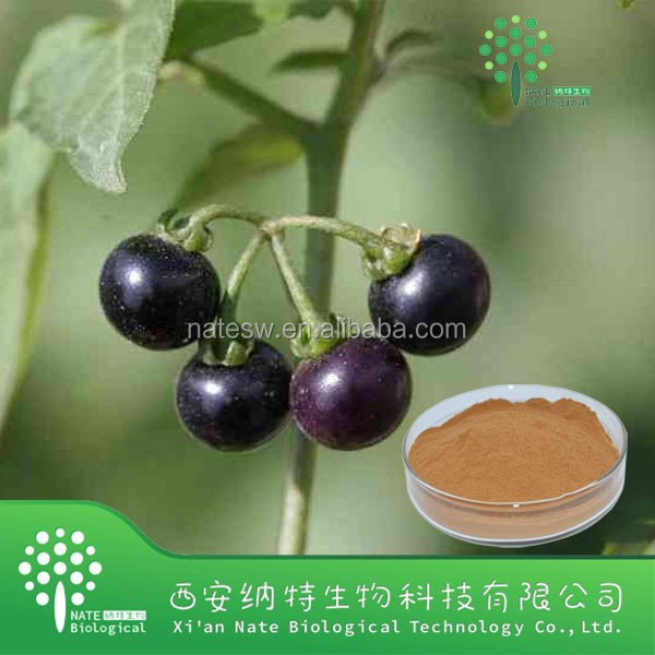 Healthy supplement Solanum Nigrum Extract Powder 20:1 with low price