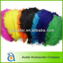 High Quality All variety of color choices Ostrich Feather decoration