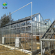 Hot Sale Customized Agricultural /Commercial Plastic Greenhouse
