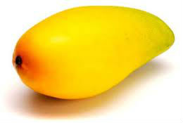 bulk fresh fruit mangos in india