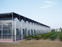 External blinds in the water cycle of greenhouse