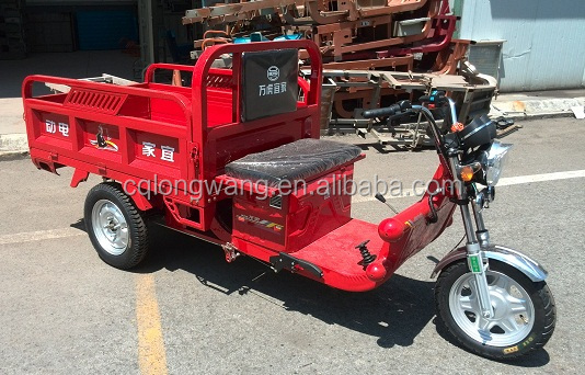 China Manufacturer 800W 1000W cargo electric tricycle/newest model cheap bajaj three wheeler price