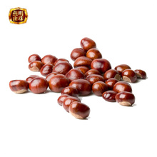 2017 Chinese Organic Fresh Raw Sweet Chestnuts for Sale