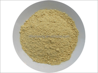 ginger powder high quality