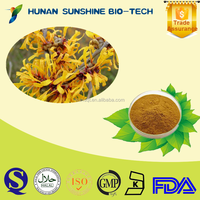Best quality of Hamamelis mollis P.E. powder 10% Tannin