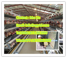 FRD-Poultry farm equipment automatic battery design layer chicken cage/quail cage with high quality