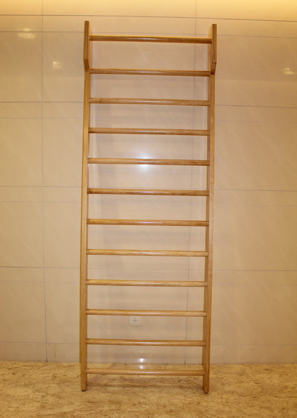 swedish wall ladder home gym for kids