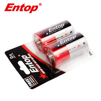 17 Years Experience Cheap High Capacity D Size R20p 1.5V um1 Battery