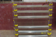 Low price metal quail bird layer cage / feeding system for sale in China
