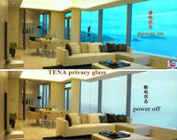 TENA (TN-SWG-185B) 18.5mm Switchable Pdlc Privacy Smart glass