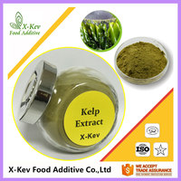 Fresh Natural Kelp Extract Powder 40% Fucoxanthin 10% Fucoidan