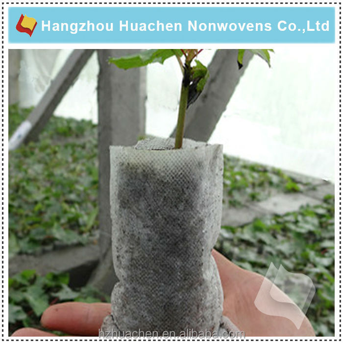 Functional and Disposable Bestseller Plant Pot Cover