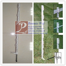 Length 1.6m Garden Fence Post Pins/Stakes(factory & trader)