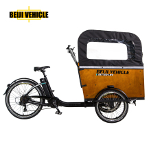 cabin electric pedal saaist cargo tricycle trike