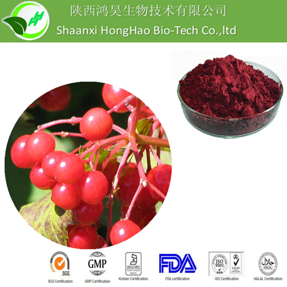 100% Pure Natural Violet Fine Powder Cranberry P.E with Best Price