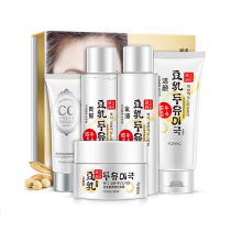 wholesale korean beauty skin care cream set skin care product