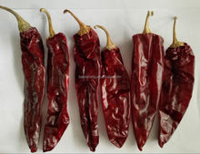 Dry Red Whole Paprika Pods Export to North America