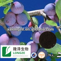 natural bilberry/cranberry/blueberry p.e (25% anthocyanidins)