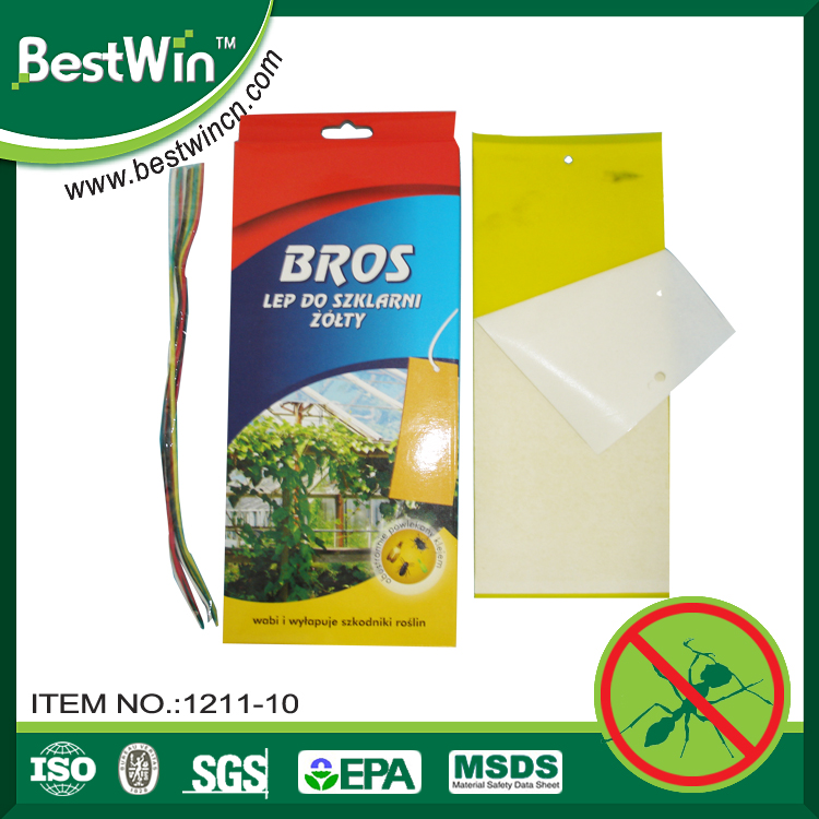 BSTW welcome OEM ODM strong adhesive cardboard insect catcher