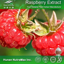 Top Quality 99% Raspberry Ketone(CAS NO.:5471-51-2)