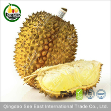 wholesale dried fruit crispy freeze dried durian chips