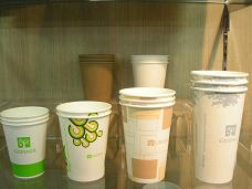 PLA PAPER CUPS (biodegradable)
