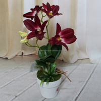 2016 cheap sale indoor desk decor orchid bonsai