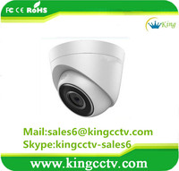 Top 1 In Stock 1MP Network Turret Small CCTV IP Camera DS-2CD1301-I (C)