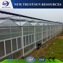 Eco-friendly factory low price 200 micron uv resistant plastic film greenhouse