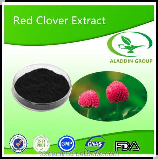 High Quality Red Clover Extract 40% Trifolium Pratensel L