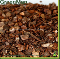 Top Quality Pine Bark Extract 90% Polyphenol, 95% Proanthocyanidins